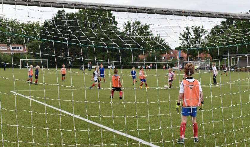 Ruim 250 spelertjes kwamen zaterdag in actie bij DVS.