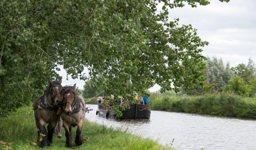 De originele ijsselaak 'Den Onthaestingh'. van Reederij de IJsel wordt voortgetrokken door twee stoere Belgische trekpaarden,een authentieke  oer-Hollandse belevenis . (Foto: Alain Ulmer)