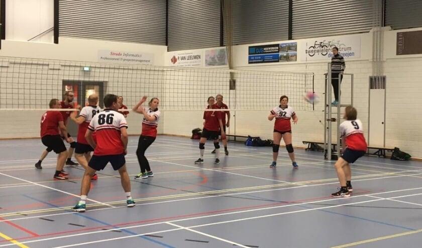 Volleybalvereniging WHV in actie