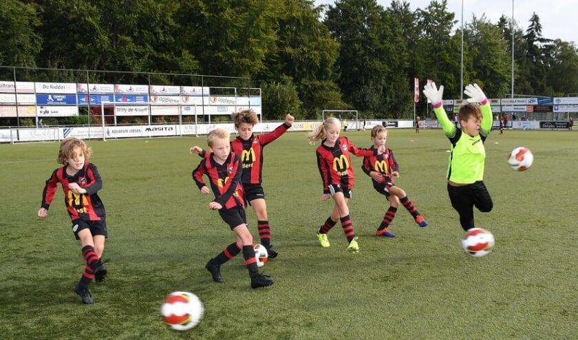 <p><strong>Afgelopen weekend zijn veel clubs weer met het sportseizoen gestart. Zoals bij Best Vooruit, waar zaterdag de eerste wedstrijden werden gespeeld op de groene grasvelden.&nbsp;</strong>Foto: Marijke Vermeulen&nbsp;</p>