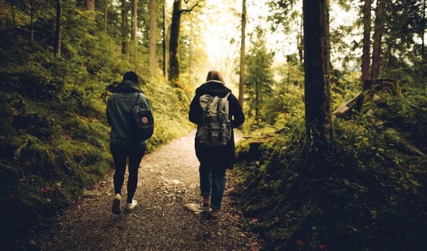 <p>Trek je de natuur in dan is een rugzak handig om te hebben.</p>