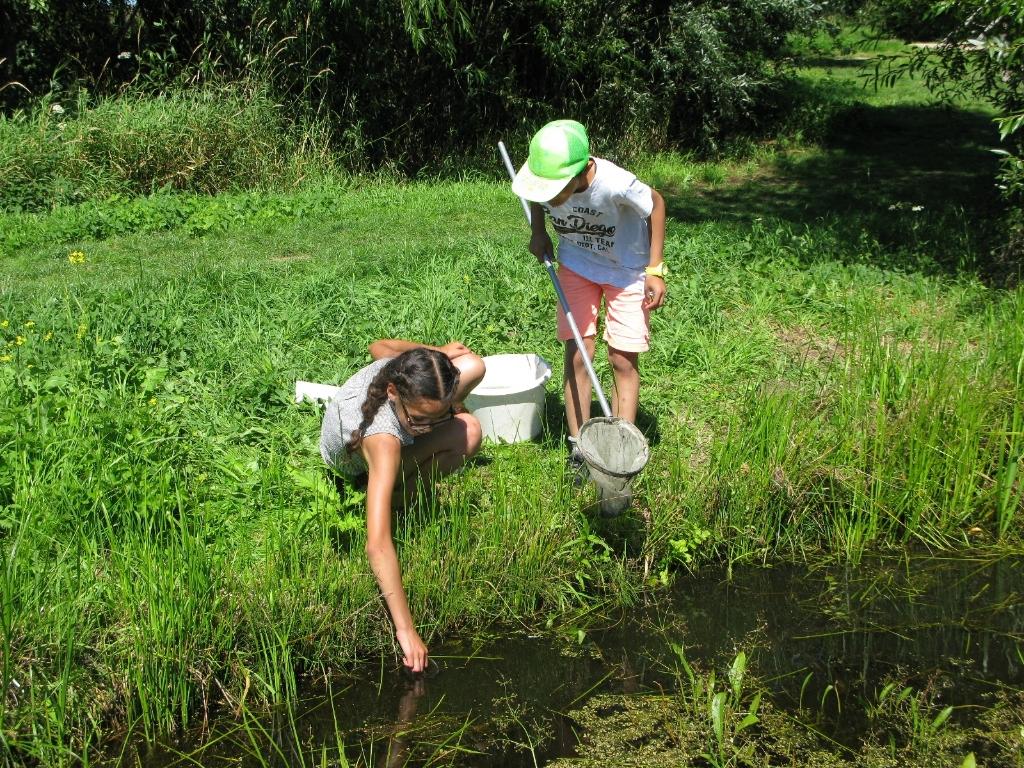 Oumnia en Tung zijn op zoek naar waterbeestjes Foto: Isolde van Overbeek © DPG Media