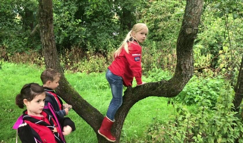 <p>Kinderen willen weer naar buiten. (Foto: Scouting Tono-groep)</p>