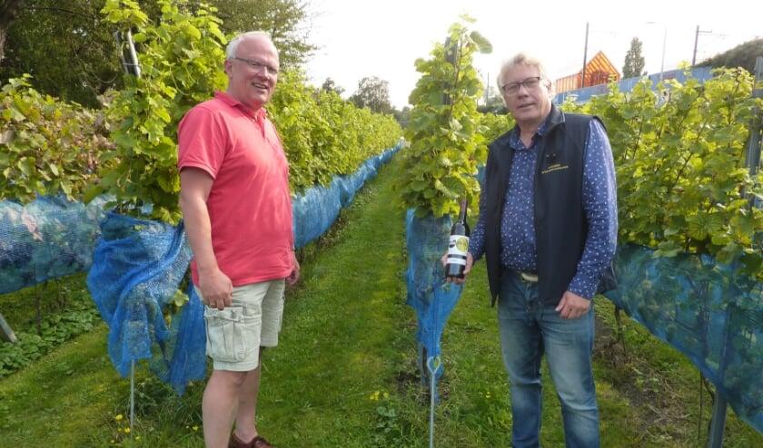 <p>&quot;Onze wijn viel in de smaak bij kenner Harold Hamersma&rdquo;, zeggen Frank (links) en Franc van de Haagse Stadswijngaard.&nbsp;</p>