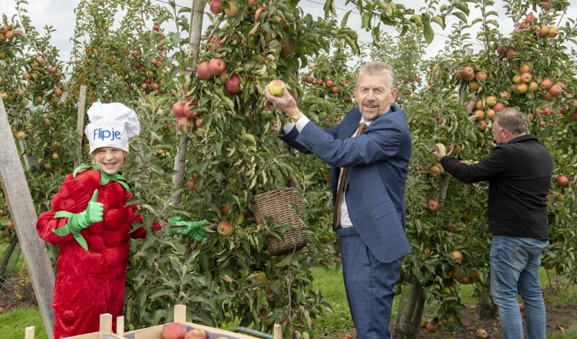 <p>Vrijdag 25 september plukte Jan de Boer, speerpuntvoorzitter Recreatie & Toerisme van Fruitdelta Rivierenland, het eerste kistje vol met Betuwse appels als start van de Betuwse Appelplukdagen. Bij het plukken in de boomgaard d&rsquo;n Kerkewaerdt in Wadenoijen werd hij vergezeld door fruitteler Aart Blom en Flipje, het vrolijke fruitbaasje uit Tiel. (foto&#39;s: Iris Spaink)</p>