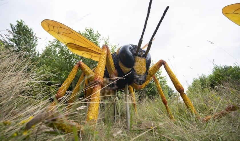 Insecten, spinnen en andere kleine ongewervelde diertjes nemen een belangrijke rol in het dierenrijk in. (Foto: Koninklijke Burgers' Zoo)