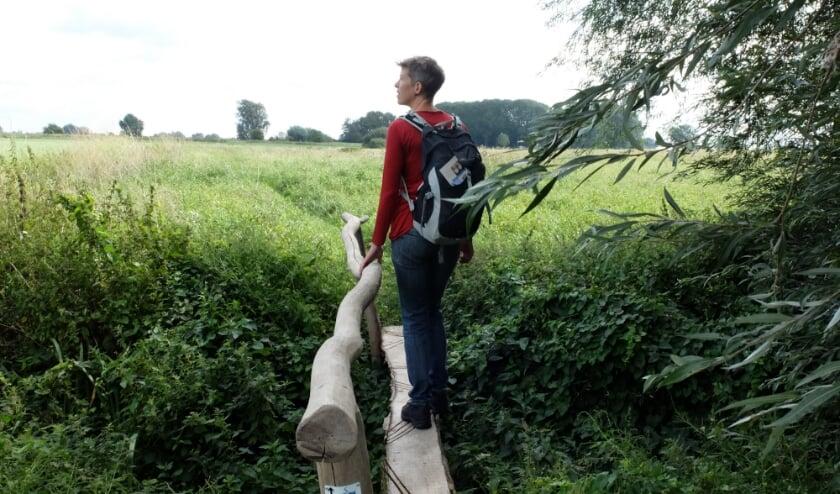 <p>De Klompenpaden zijn populair en er komen er steeds meer. (foto: Stichting Landschapsbeheer Gelderland)</p>