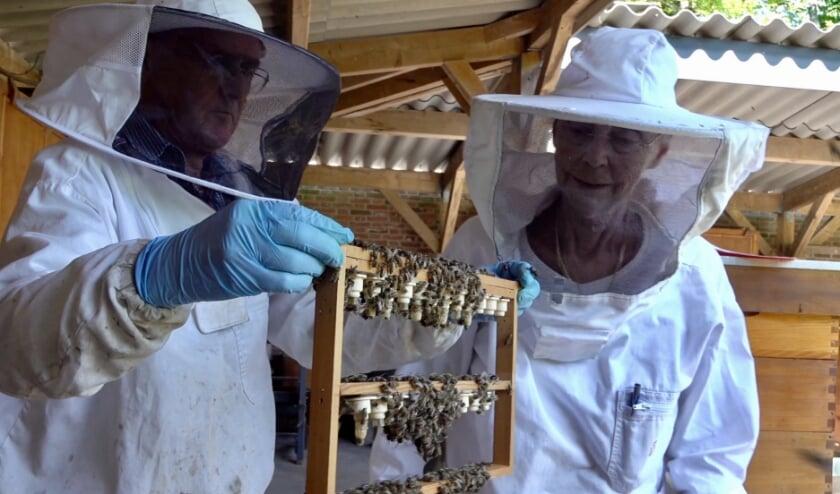 <p>Filmclub RVCV heeft niet stilgezeten en presenteert een bijzondere filmavond over bijen. &nbsp;</p>