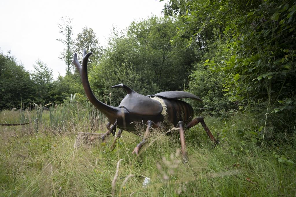 <p>Foto: Koninklijke Burgers&#39; Zoo</p> © DPG Media