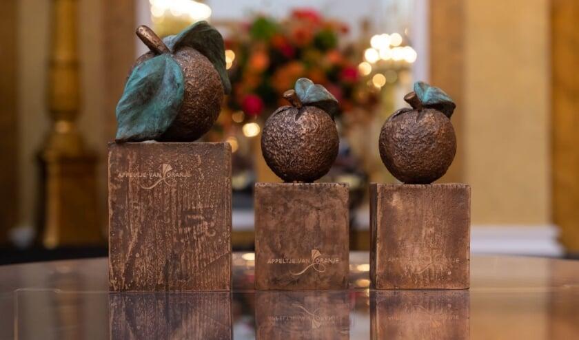 <p>Er kan tot 20 januari gestemd worden voor de Appeltjes van Oranje. Een nieuw leven - nieuwe schoenen uit Helmond is een van de genomineerden.</p>