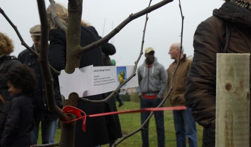 <p>Op dinsdag 19 januari is er een digitale informatieavond over de nieuwe dorpsboomgaard in Bruchem.</p>