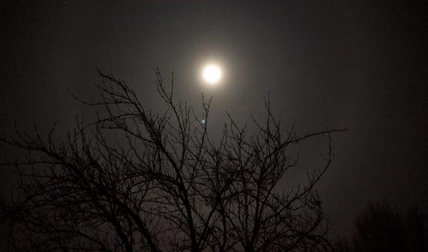 """Anneke Doornbos: """"Op de een na laatste nacht van 2020; geen vuurwerk maar wel een halo om de volle maan. De natuur maakt z'n eigen spektakel."""""""