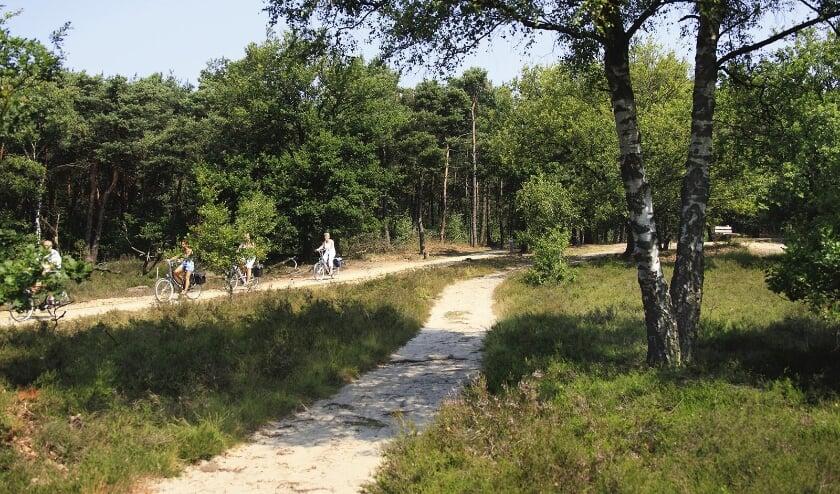 <p>Vanuit De Lindenberg kun je heerlijk fietsen in de omgeving. (Foto: De Lindenberg)</p>