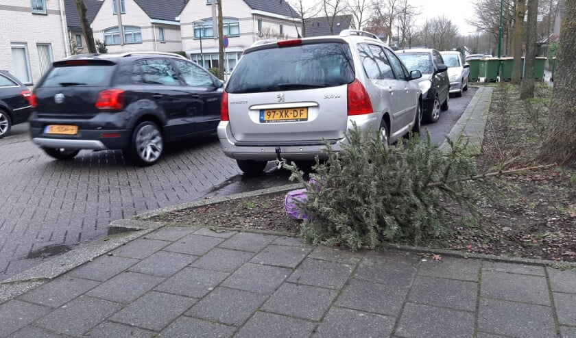 <p>&#39;Gewoon&#39; gedumpt op straat.... (Foto: Martin Brink/Rijnpost)</p>