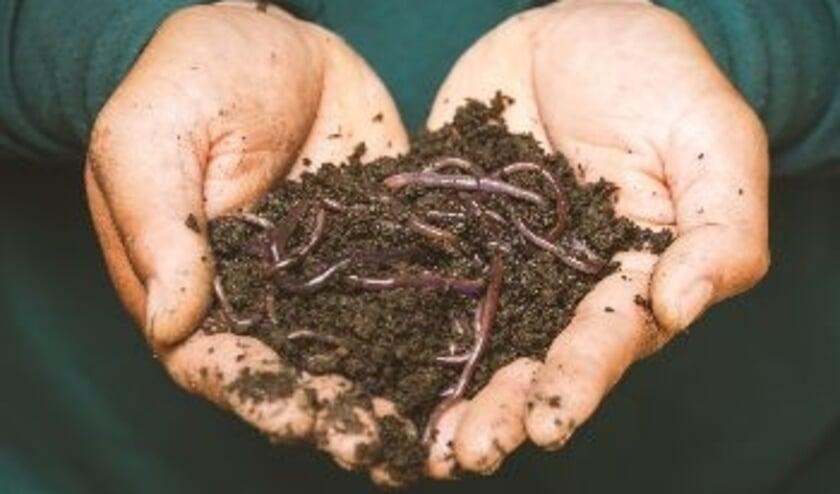 <p>De kruipers maken compost van je afval.&nbsp;</p>
