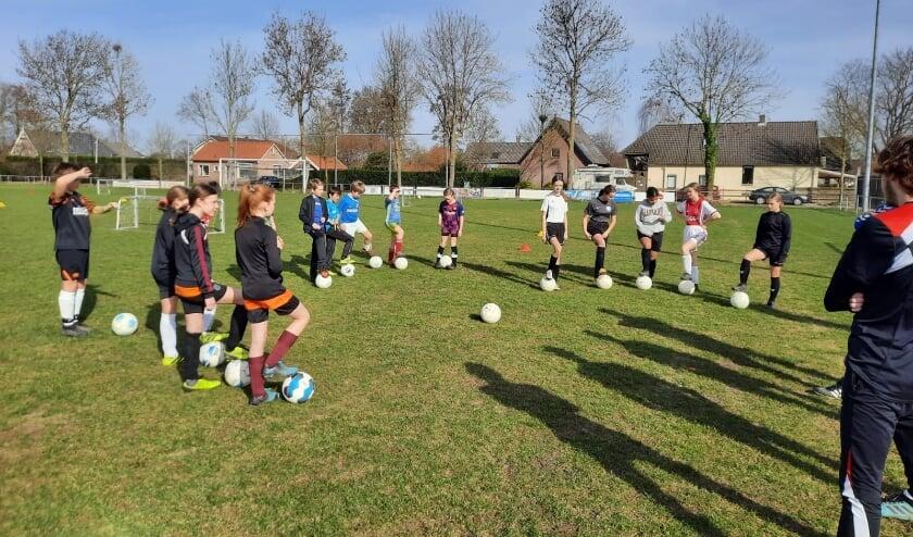 Skills Training VVO