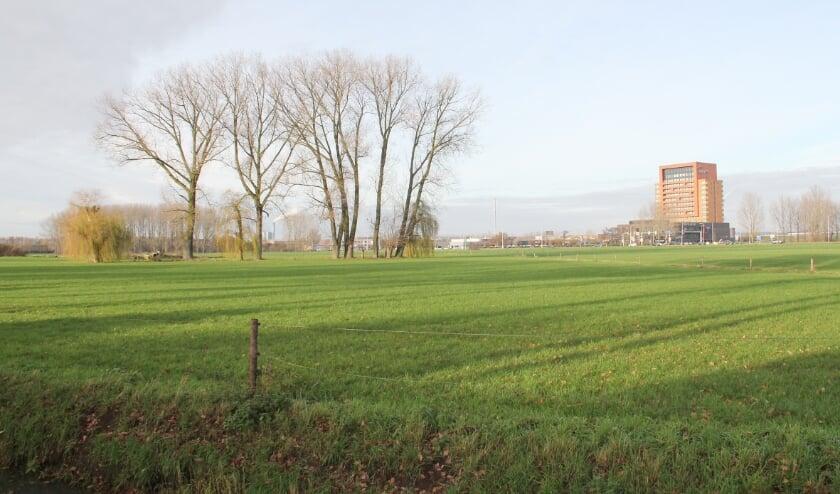 <p>De Ploen-Noord is in beeld als uitbreidingslocatie voor woningbouw. Het gaat om de agrarische grond tussen de Ploenstraat/Hogeweg en de Westsingel/Oostsingel.</p>