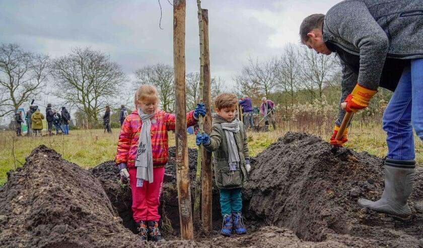 <p>Plan Boom Utrecht deelt met steun van provincie Utrecht 10.000 gratis boompjes uit aan inwoners.&nbsp;</p>