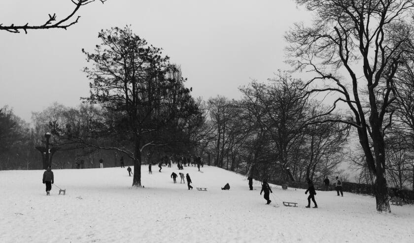 Wageningers in de sneeuw