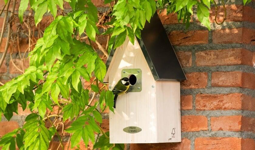 <p><strong>&ldquo;Vogels zijn vrij kieskeurig en willen alleen de allerbeste plekjes&rdquo;, stelt Vivara.</strong>&nbsp;</p>