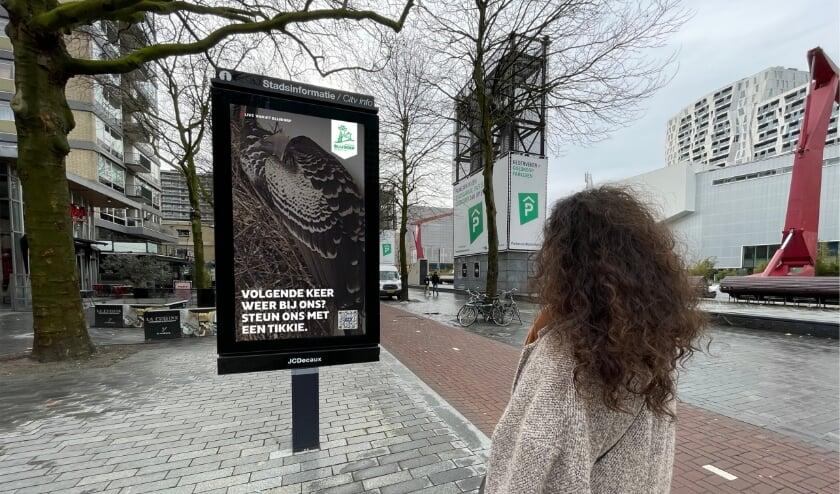 <p>Bewonder de dieren uit Diergaarde Blijdorp live in het centrum van Rotterdam.</p>