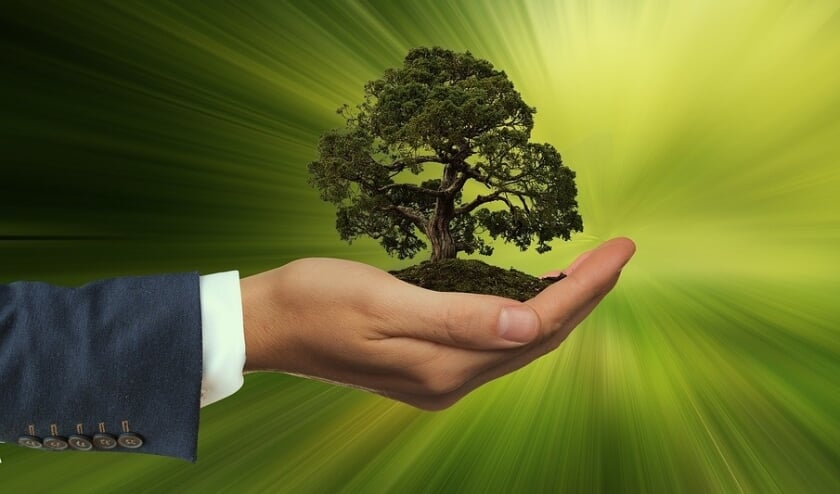 <p>Op 27 & 28 februari organiseert Meer Bomen Nu een landelijke doneer-een-zaailing weekend voor klimaat en biodiversiteit.</p>