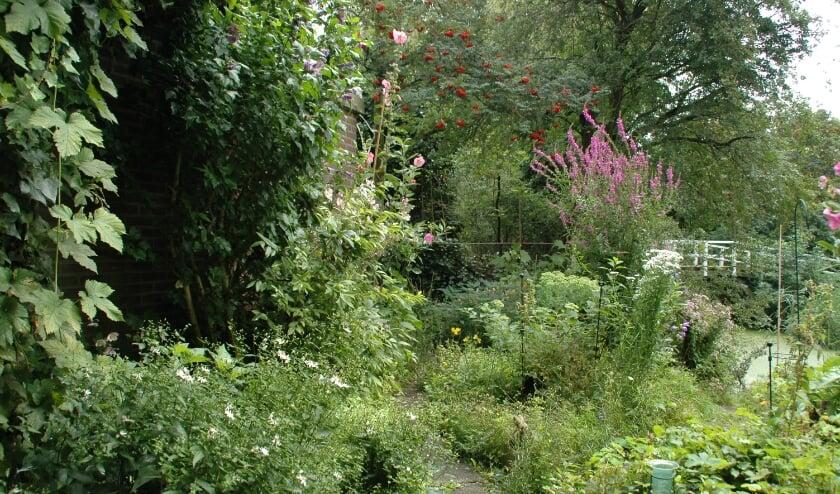 <p>Een natuurrijke tuin is een tuin om alle seizoenen mee te beleven&nbsp;</p>
