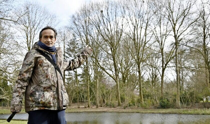 <p>Frank wijst de bomen aan waaruit de nesten van de roeken zijn weggehaald. Inmiddels zijn de vogels weer aan het nestelen. (foto: Ab Hendriks)</p>