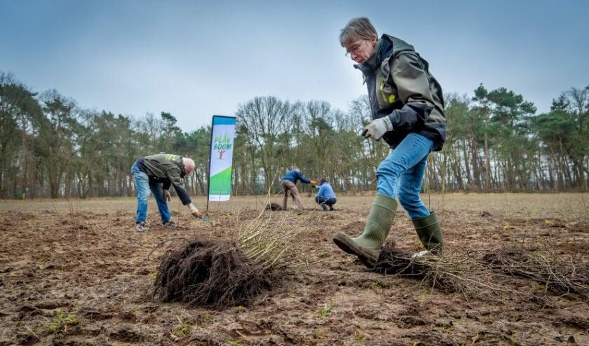 <p>Vrijwilligers van IVN Veldhoven Eindhoven Vessem planten ruim 325 jonge bomen. Foto: Erik van der Burgt</p>