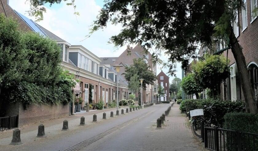 <p>Een groene straat in Schuytgraaf.</p>