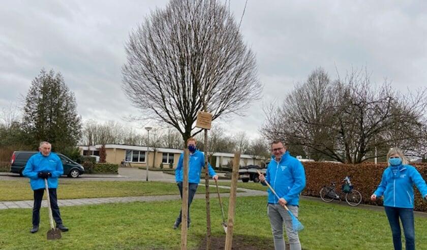 ChristenUnie Wierden-Enter heeft een boom geplant op de hoek van Dr. G.H. Beensweg en Mr. Ter Kuileweg in Wierden.