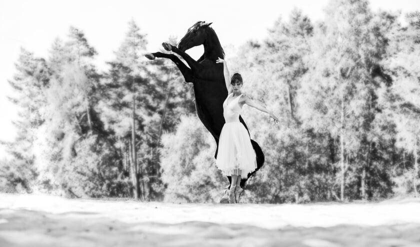 <p>Ballerina&#39;s en paarden is misschien geen voor de hand liggende keuze, maar zeg nou zelf: dit is toch pure schoonheid?</p>