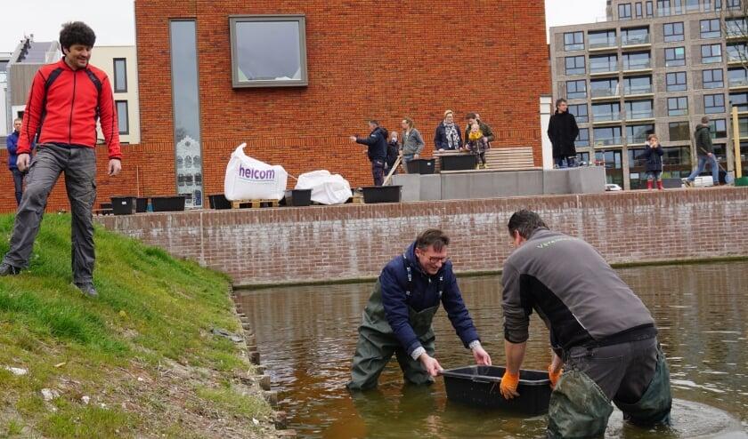 <p>Stephan Brandligt (wethouder Duurzaamheid), Jiri de Waal (adviseur en sponsor waterplanten), Robert Barunovic (initiatiefnemer en buurtbewoner) laten de waterplanten te water.</p>