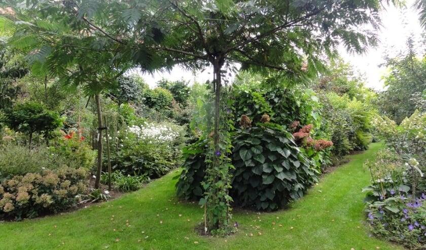 Opentuindag bij Tuin de Zumpe