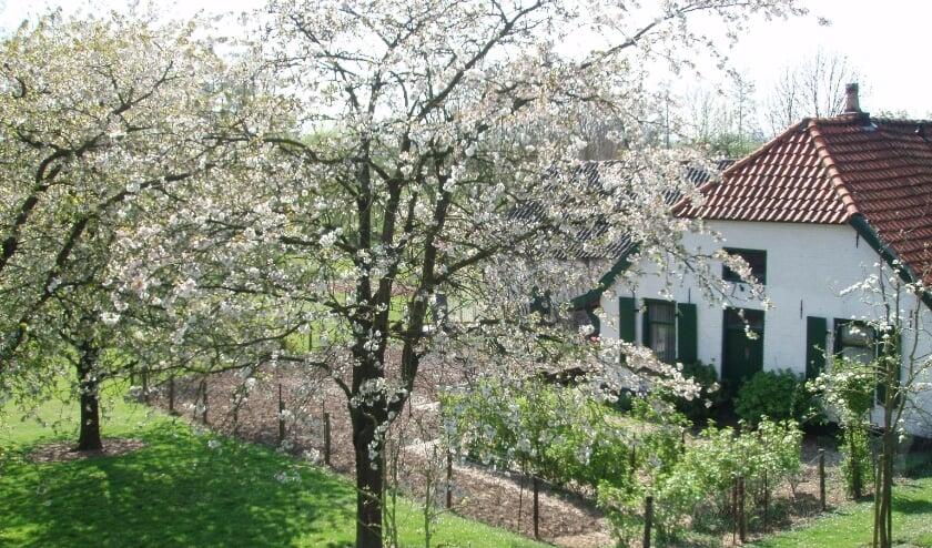 <p>Het beplantingsproject wordt mede mogelijk gemaakt door de gemeente West Betuwe en de provincie Gelderland.</p>