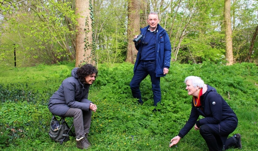 <p>Ivon Vrolijk, Gerrie Abel en Carin Laarman doen mee aan de BioBlitz: vastleggen van alles dat kruipt, vliegt, groeit en bloeit.</p>