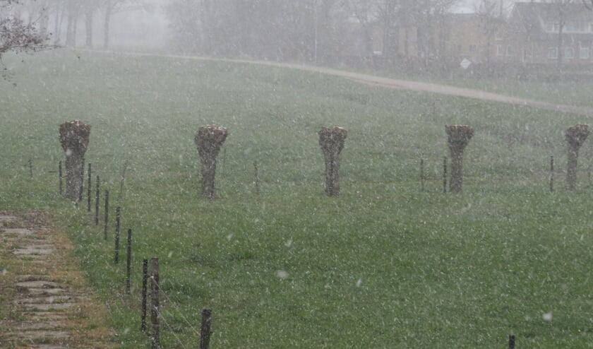 <p>sneeuwvlokken dalen neer</p>