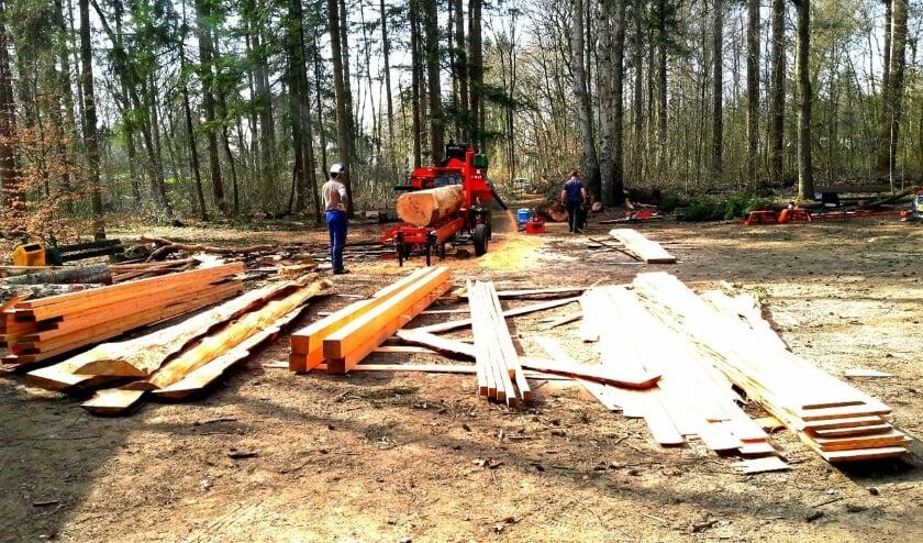 <p>Het terrein van scouting lijkt wel een zagerij. Dat is het even ook. Een oude, dode boom wordt tot balken en planken verzaagd en verkocht.</p>