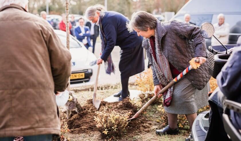 <p>Op de foto Marietje de Bijl (50 jaar in dienst) die de boom plant. Met op de achtergrond mevrouw Plieger.&nbsp;</p>