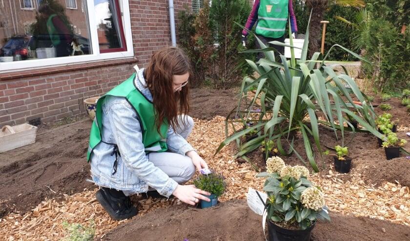 Twee vrijwilligers zijn druk met aanleggen en beplanten van een van de tuinen.