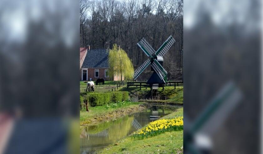 <p><em>Lente in het Nederlands Openluchtmuseum met op de achtergrond boerderij Beerta. Foto: Mike Bink</em></p>
