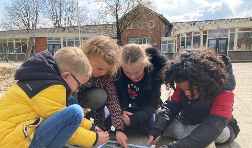 Leerlingen zijn druk aan het overleggen welke bloemen ze kort daarvoor gevonden hebben.