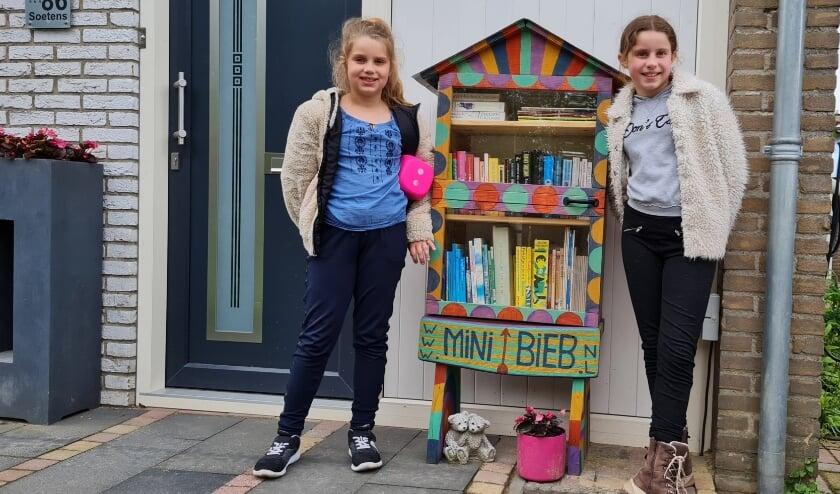 <p>Veldhoven kent bij www.minibieb.nl een kleine 20-tal registraties van MiniBiebs. 6 ervan doen mee met de themadag, zaterdag 5 juni.&nbsp;</p>