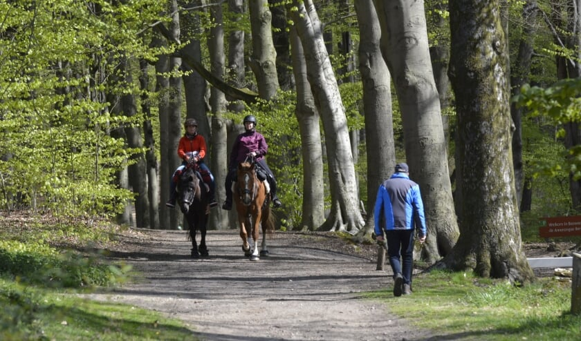 <p>Het wordt steeds drukker in de natuur, zoals hier in het Amerongse Bos: wandelaars, MTB&#39;ers en ruiters met paarden. Die laatste groep moet straks ook betalen voor het bezoek aan de natuur.</p>
