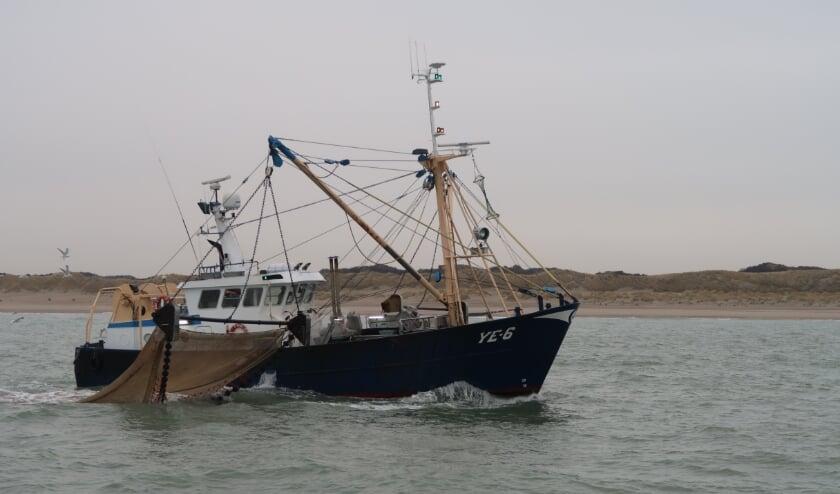 <p>De YE-6 is een garnalenkotter die wekelijks voor de Zeeuwse kust vist. (foto W.M. den Heijer)</p>