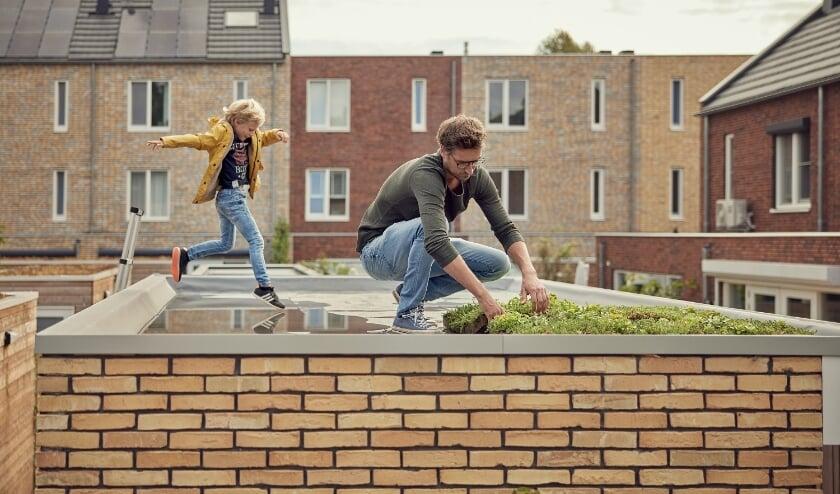 <p>Plantjes op het dak houden regenwater langer vast. Dat kan ook op de berging of garage.&nbsp;</p>