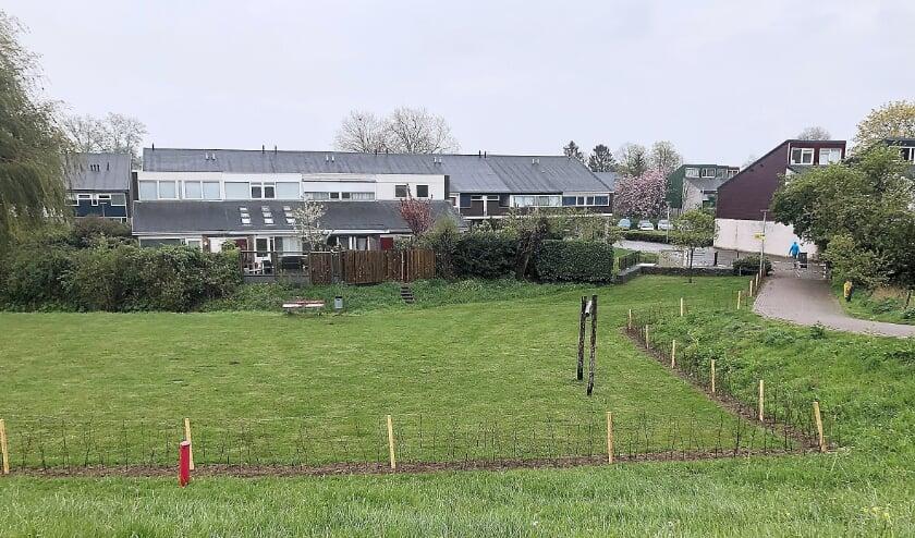 <p>De Vereniging van de Wijk heeft in samenwerking met gemeente en bewoners een haag langs het voetbalveldje aan de dijk ingeplant.</p>