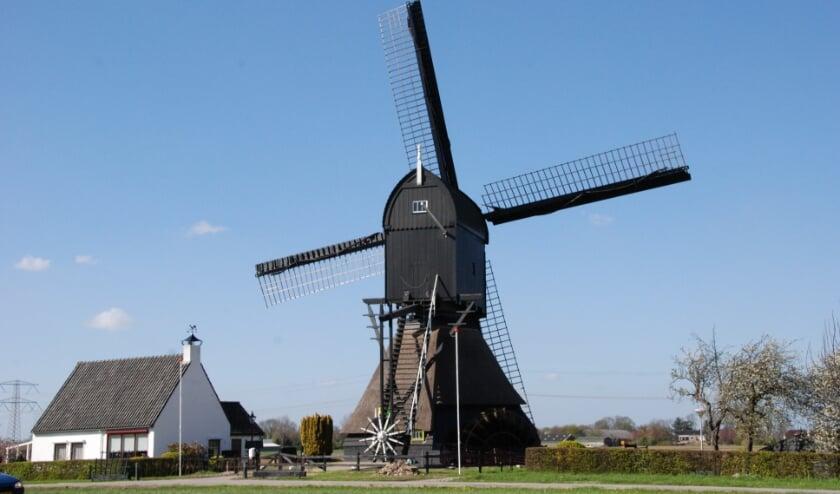 <p>De Oostmolen in Mijnsheerenland. (eigen opname molenstichting) </p>