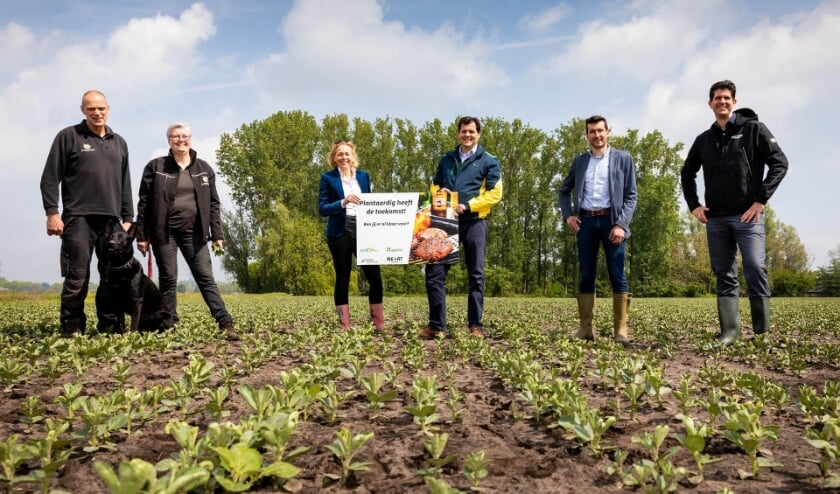 In Best werd op donderdag 20 mei de eerste twee van dertig hectare veldbonen voor plantaardige vleesvervangers feestelijk ingezegend.