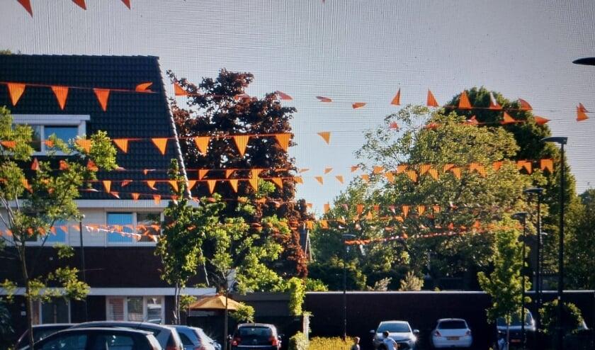 <p>De Hof van Gerwen heet tijdens het EK de Hof van Holland. In Veldhoven is veel oranje te zien...</p>